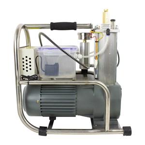 Compressor Ar Comprimido Para Carabinas Pcp 200Bar - Rossi