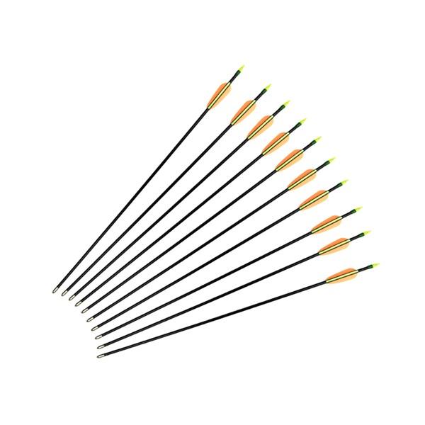 Kit 10 Flechas Arco Poe Lang Fibra de Vidro 76cm Preta